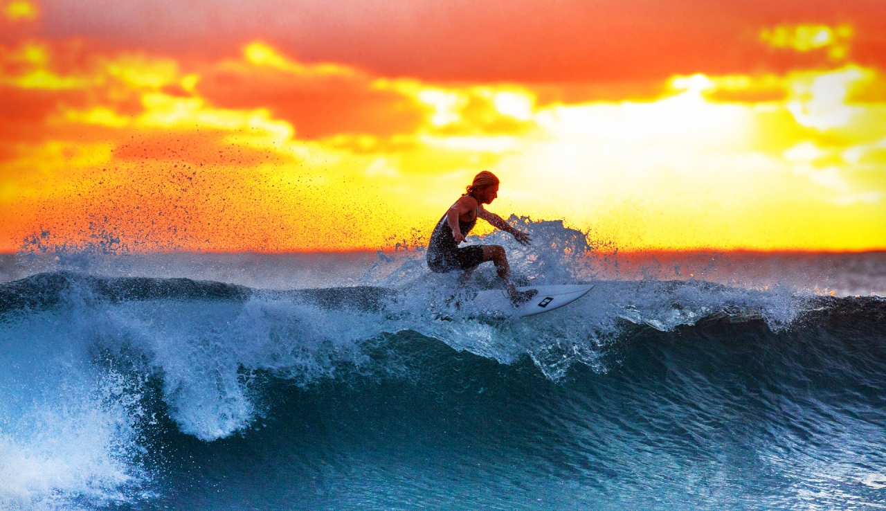 Surfer on the ocean wave during the sunset