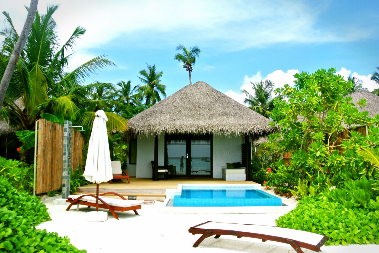 Beautiful Tourist Hut In Maldives With Pool Free Photos