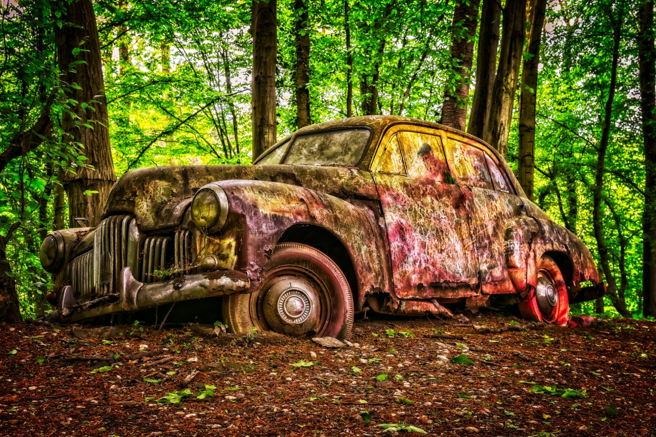 Old abandoned American car in the forest