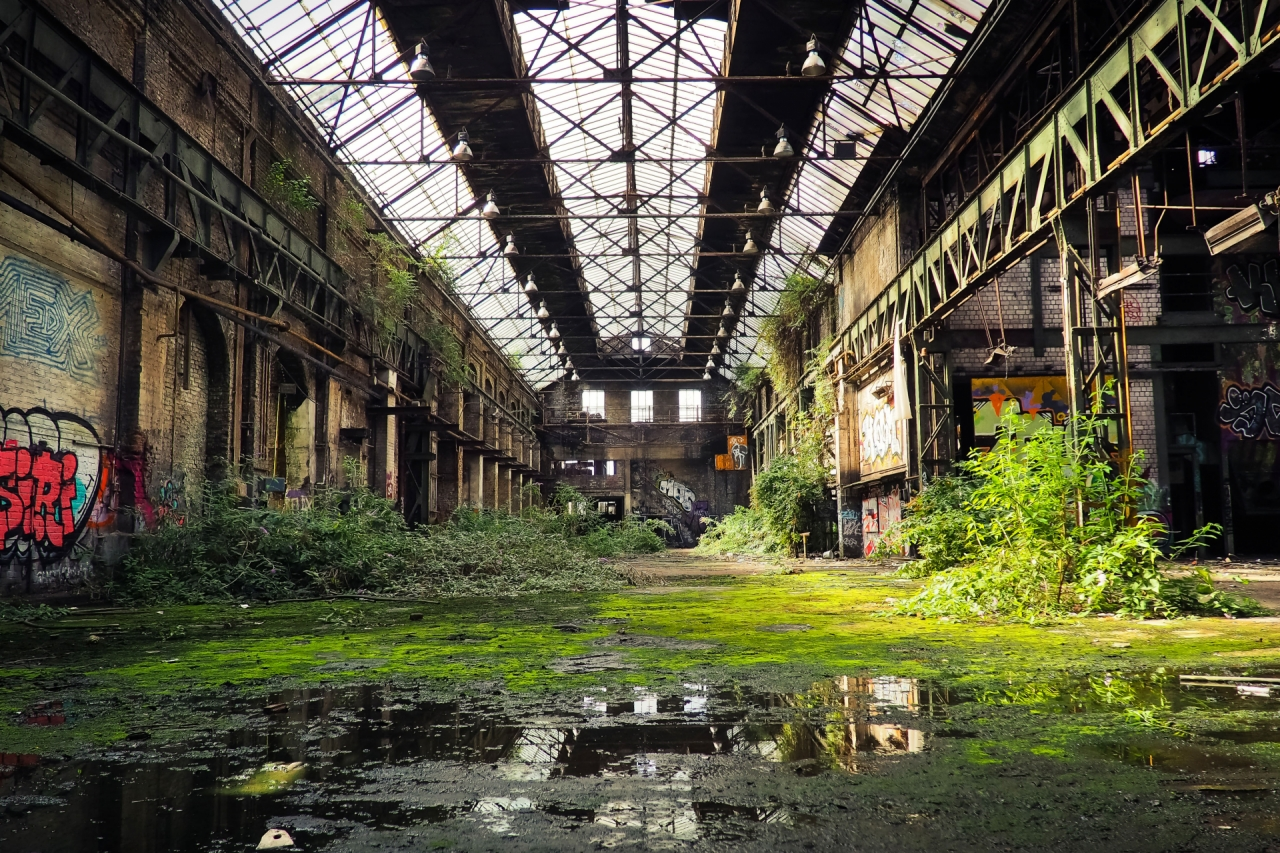 abandoned-factory-hall-with-green-grass-and-bushes-233-small.jpg