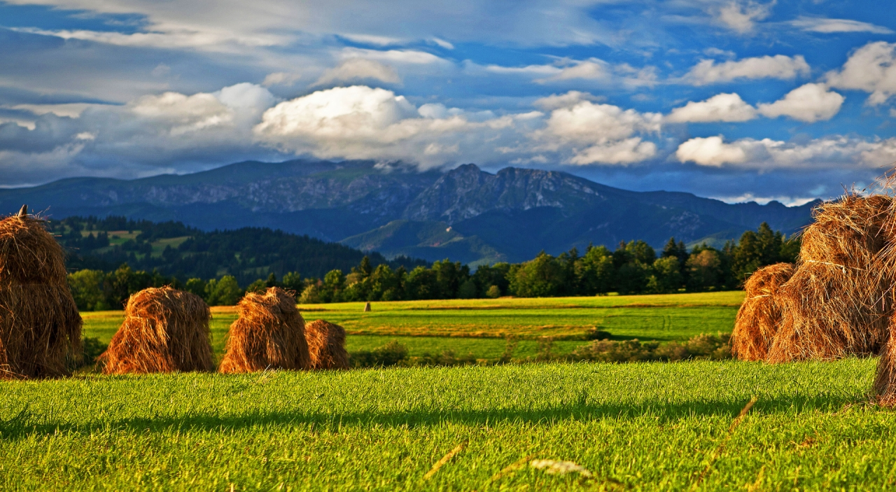 Podhale In Tatry Mountains Poland Free Photos